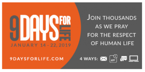 9 days for life - 2019 @ weltweit
